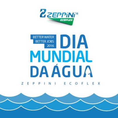 Zeppini Ecoflex DMA